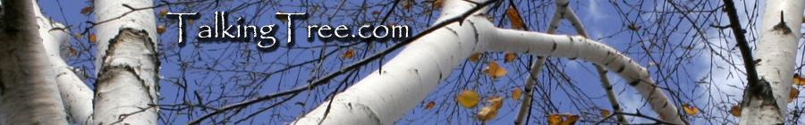 Weblog of Steven Erat