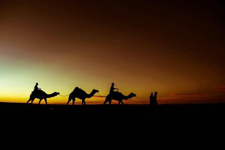 My Dandeli Karnatka Trip